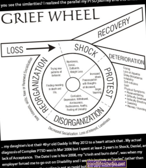 الحزن المركب واضطراب ما بعد الصدمة