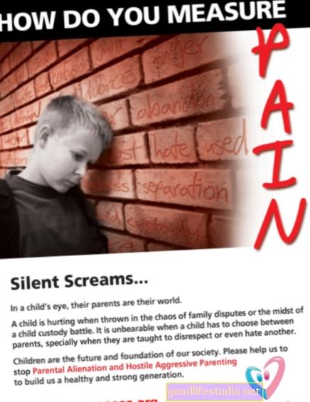 Sindrom otuđenja roditelja, socijalni radnici, roditeljska prava
