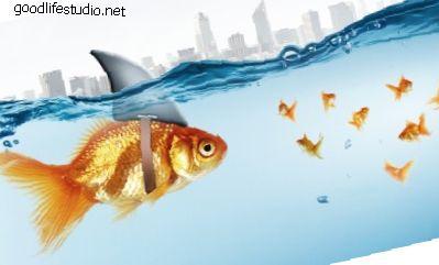 170 juegos de peces