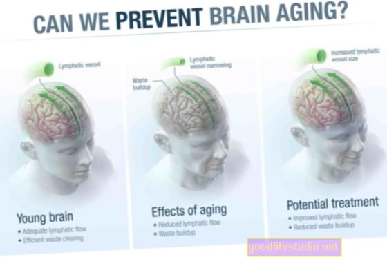 تقلل الشيخوخة من قدرة الدماغ على تصفية المشتتات