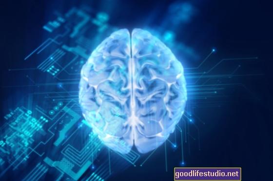 AIテクニックが初頭脳の発達を測定