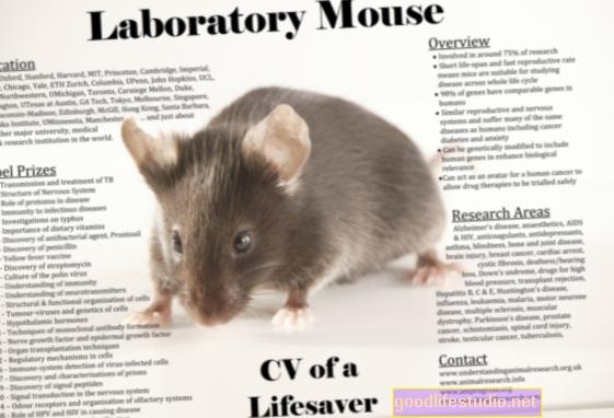 La investigación animal sugiere un vínculo genético con la recuperación del estrés