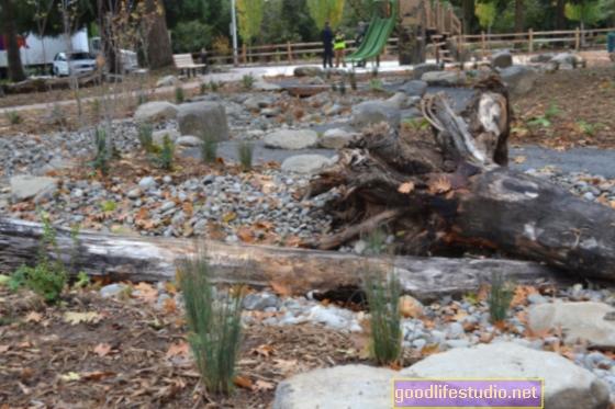 Sajauciet dabu skolas rotaļu laukumos, lai mazinātu stresu, uzlabotu uzmanību