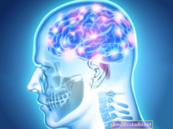 El sistema opioide del cuerpo implicado en la sensibilidad al trauma