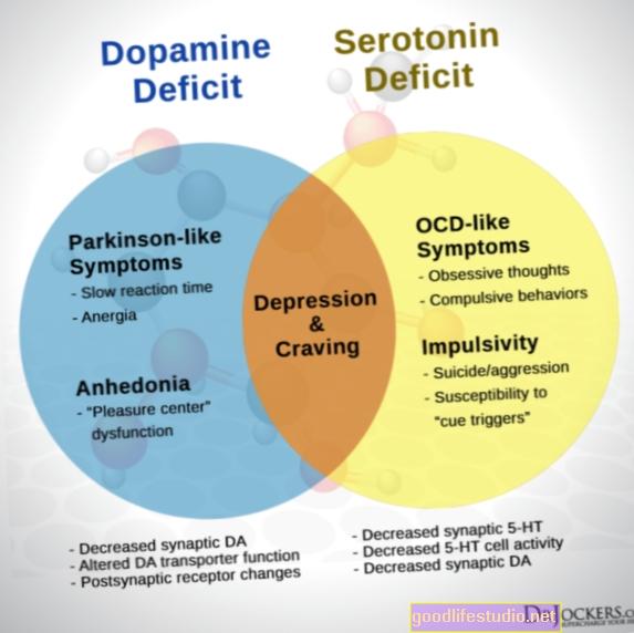 Повишаването на нивата на допамин може да увеличи поемането на риск
