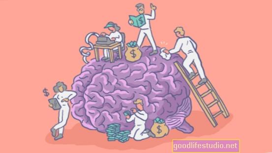 Cerebro activado cuando surgen oportunidades monetarias