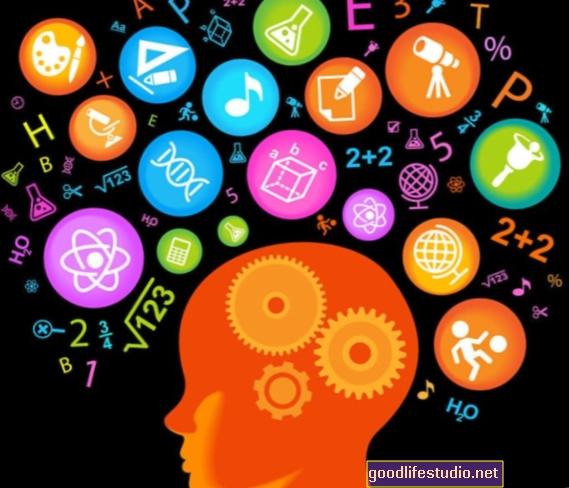 Los juegos mentales parecen mejorar la memoria a corto plazo, no el coeficiente intelectual