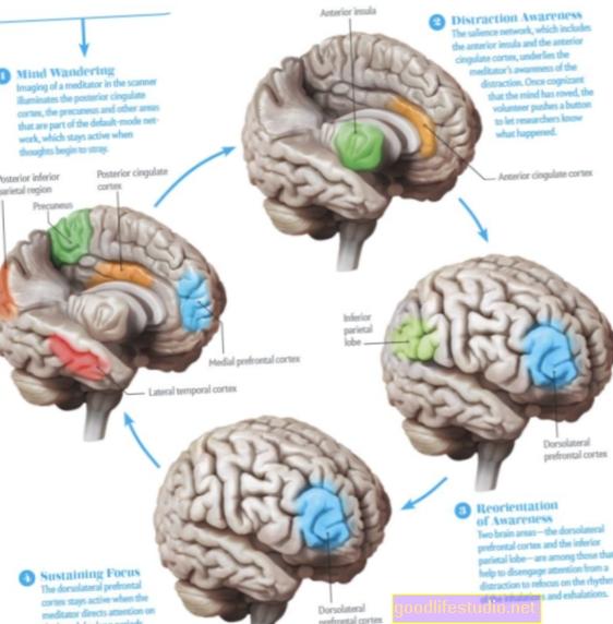 L'imaging cerebrale analizza la pratica della meditazione trascendentale