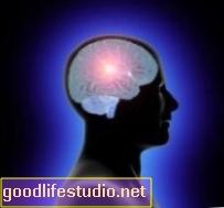 मस्तिष्क क्षेत्र नशे की लत विकल्प ID'd से बंधा है
