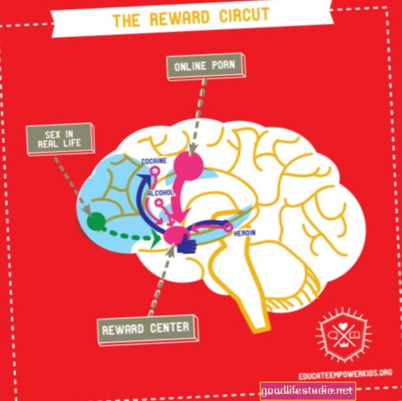 El cerebro parece recompensarnos dos veces con cada comida