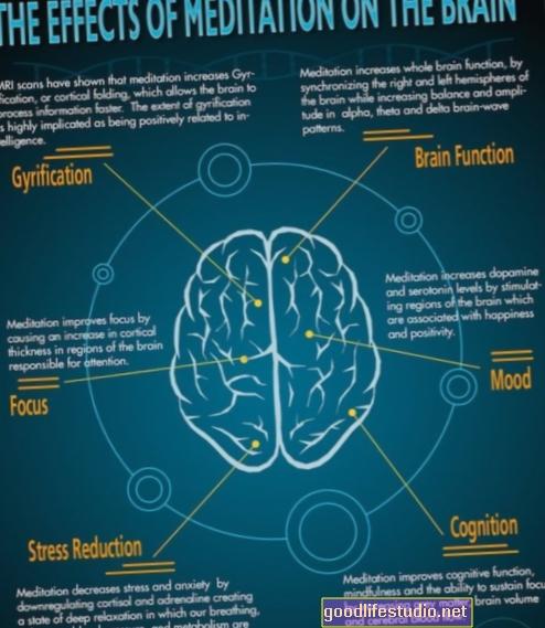 Cambios en la estructura cerebral después de la meditación