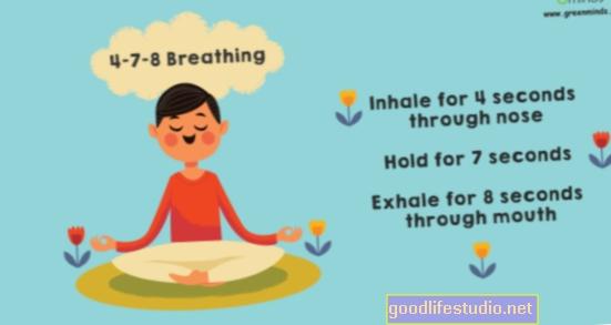 La meditación basada en la respiración ayuda a los veterinarios con TEPT