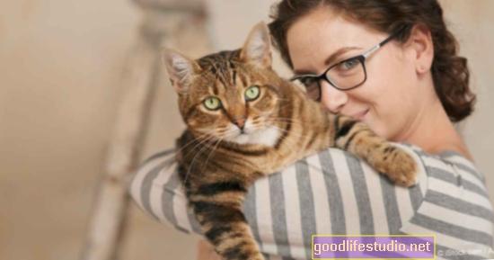 La propiedad de un gato no está asociada con problemas de salud mental