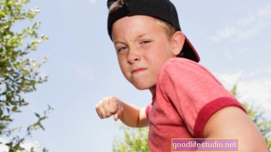 Agrese v dětství spojená s nedostatky ve výkonné funkci