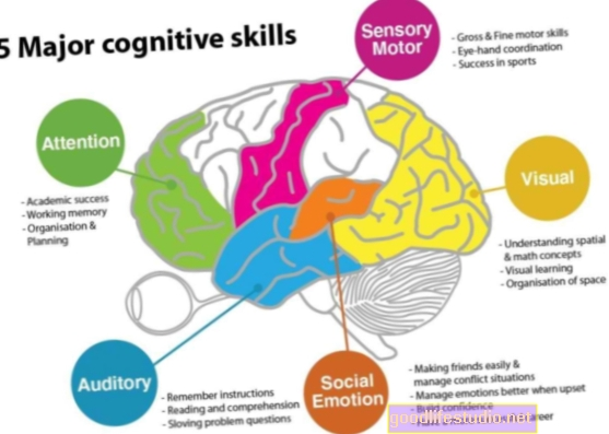 Когнитивна функција у биполарним разликама код мушкараца и жена
