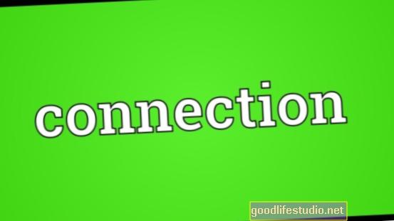 Las conexiones y la coherencia ayudan a dar sentido a la vida
