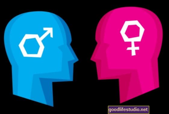 Controversia sobre las diferencias cerebrales de género