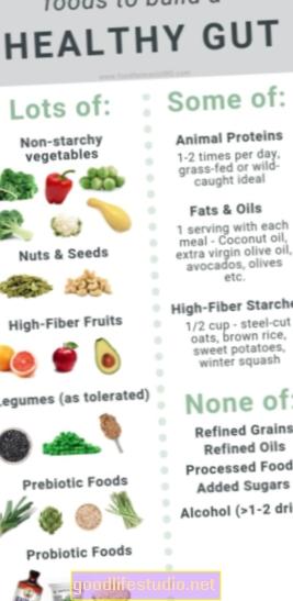 腸内細菌叢に優しい食事はアルツハイマー病のリスクを下げる可能性があります
