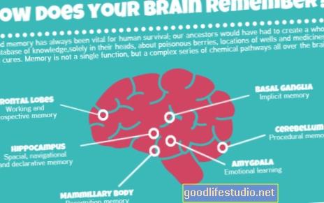 ¿Recuerda el cerebro la respuesta a los antidepresivos?