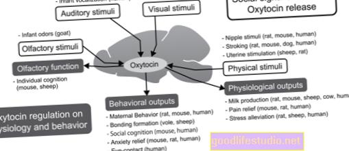 Effetti dell'ossitocina chiariti