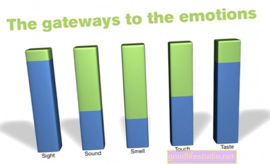Emosi Mempengaruhi Rasa