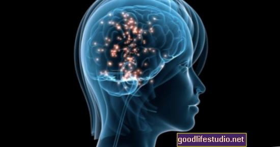Empatija, kurią įtakoja smegenų chemija