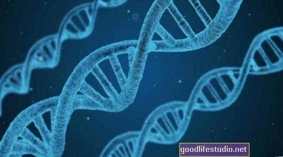 Vínculo genético encontrado para el TDAH