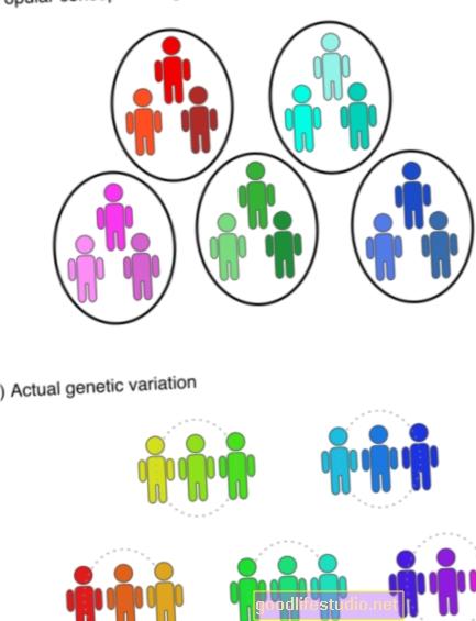 La variación genética puede influir en la impulsividad