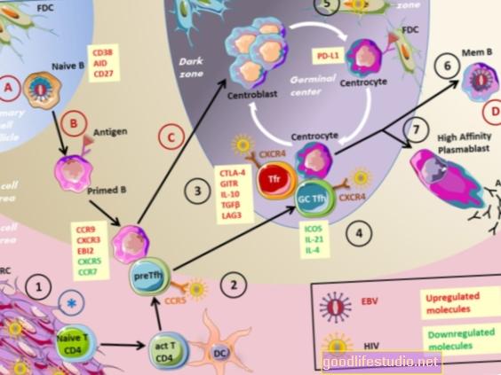 免疫応答は統合失調症、自閉症への可能な洞察を提供します