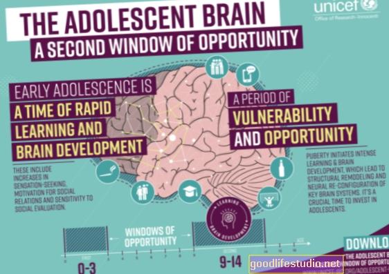 ¿Es el cerebro adolescente más sensible a los estímulos?