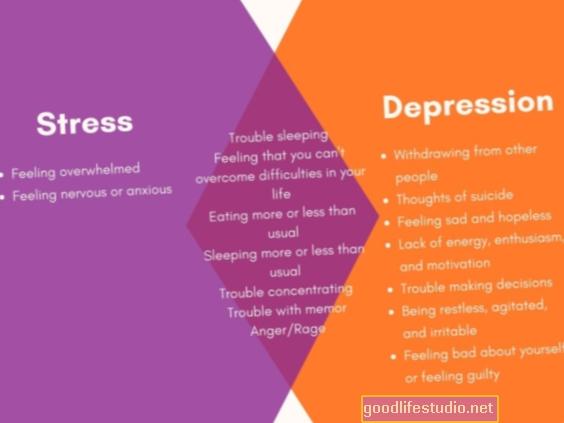 Ryšys tarp streso, nerimo, depresijos
