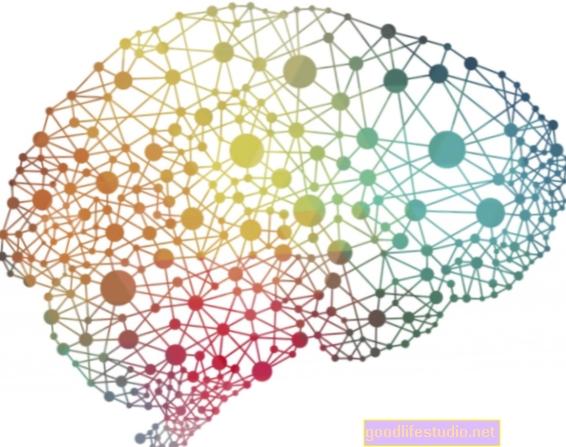 La memoria puede mejorar cuando se identifica información falsa por adelantado