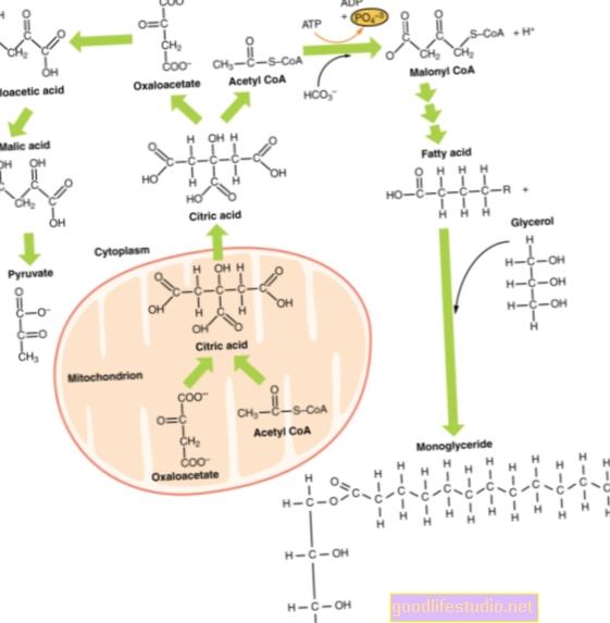 La alteración metabólica está relacionada con el Alzheimer de inicio tardío