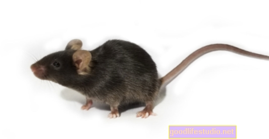 Изследването на мишки предполага, че експозицията на светлина през нощта може да доведе до депресия