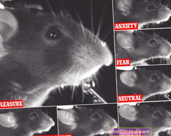 Los clics del mouse revelan el estado emocional