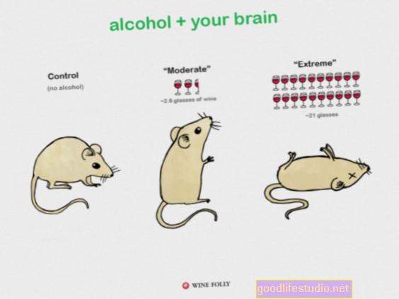 Студија миша открила је да јака употреба алкохола успорава опоравак од трауме