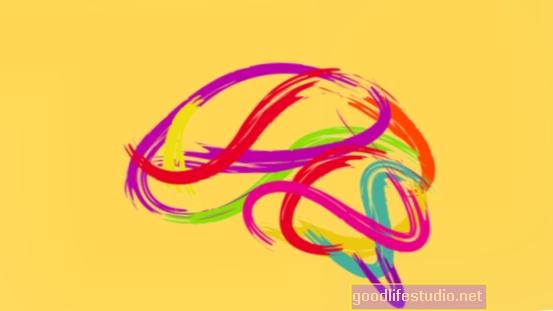 El descubrimiento de la neurociencia puede acelerar la investigación del cerebro
