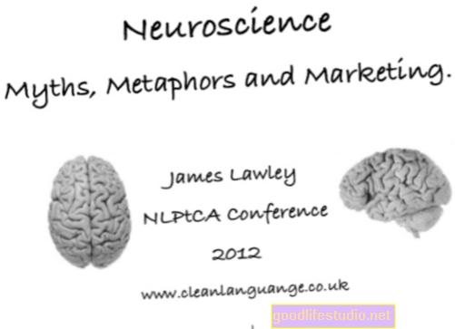 La mitología de la neurociencia obstaculiza la enseñanza