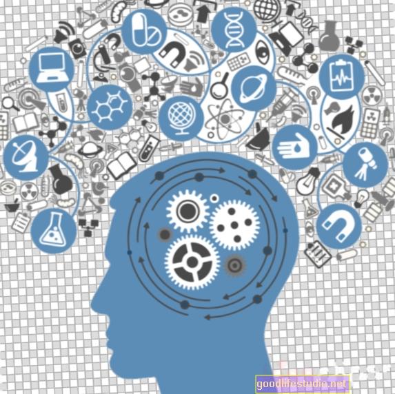 """Új kutatási eredmények szerint az emlékek """"földrajzi címkével vannak ellátva"""""""