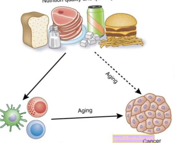 Mityba įtakoja imunitetą, senėjimą