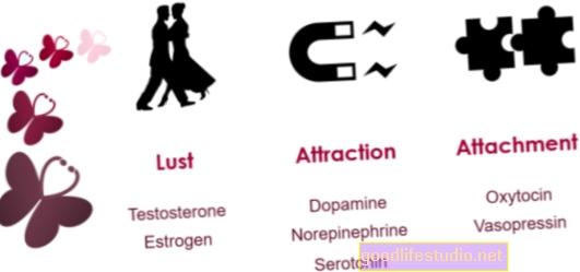 Ossitocina e gli effetti biochimici del tradimento