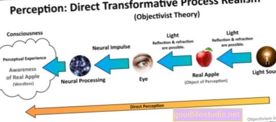 La percepción de control reduce las distorsiones del tiempo impulsadas por las emociones