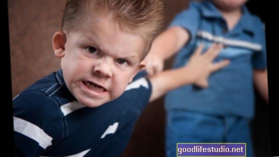 La personalidad predice el comportamiento agresivo