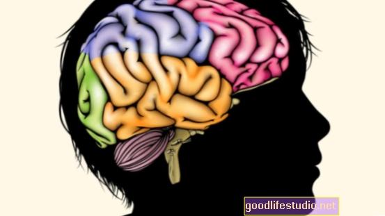 Armut behindert die frühe Gehirnentwicklung von Kindern