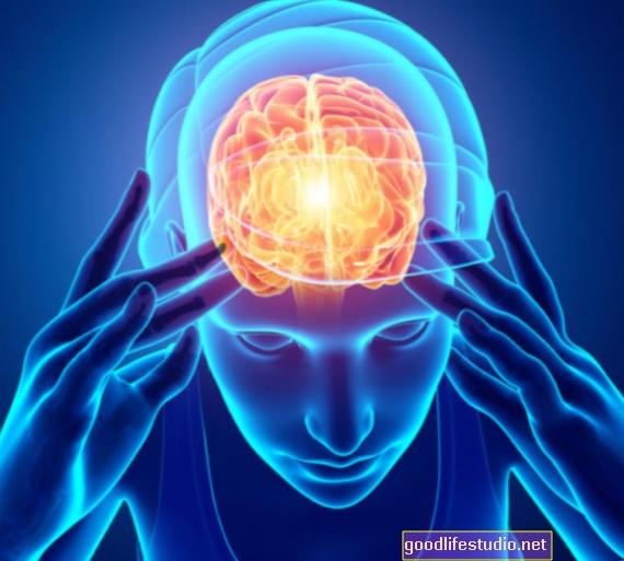 """""""Prefrontal Cortex"""" yra kritinė """"emocinio išsiliejimo"""""""