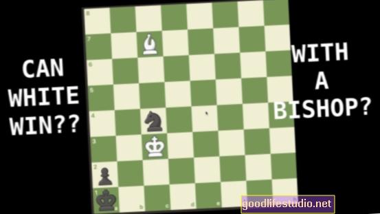 Los videojuegos de rompecabezas pueden mejorar aspectos de la cognición