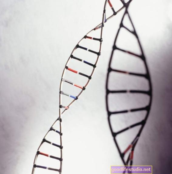 Los investigadores identifican variaciones genéticas en el TDAH