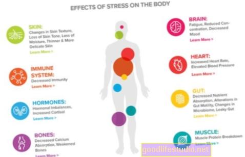 El estrés a corto plazo puede estimular el sistema inmunológico en un estudio en ratas