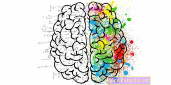 Atrodo, kad protingesnės smegenys veikia efektyviau