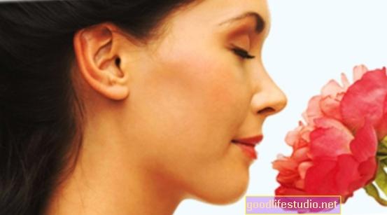 Annusare il profumo del partner può alleviare lo stress